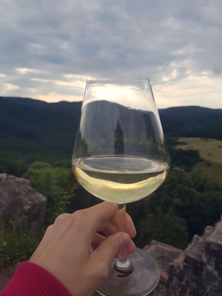 vin alsace au chateau fleckenstein