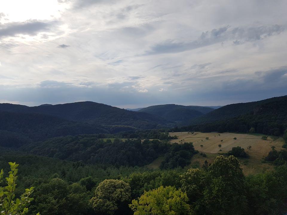 vue chateau fleckenstein