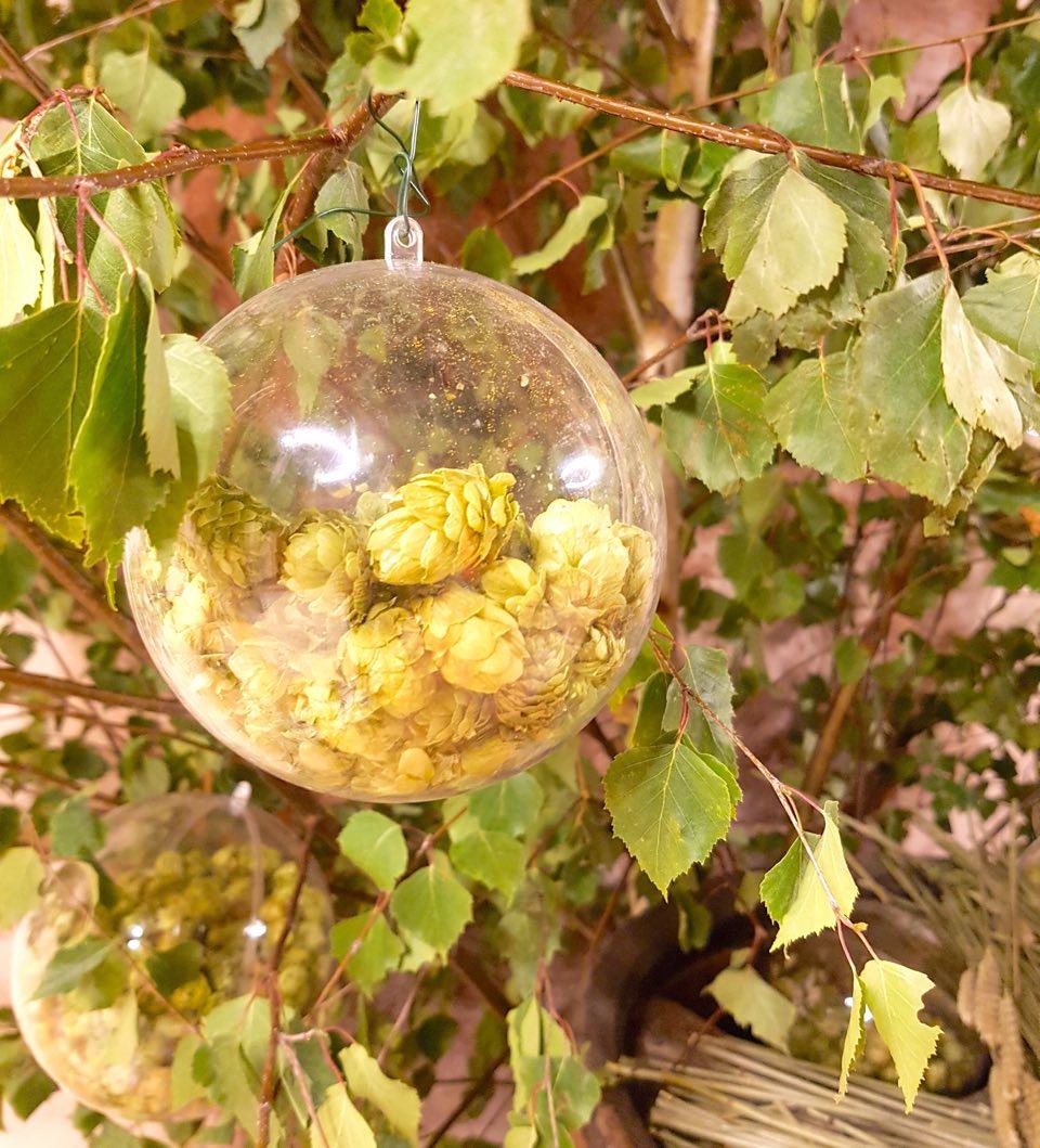 houblon dans une bulle au gré des bières