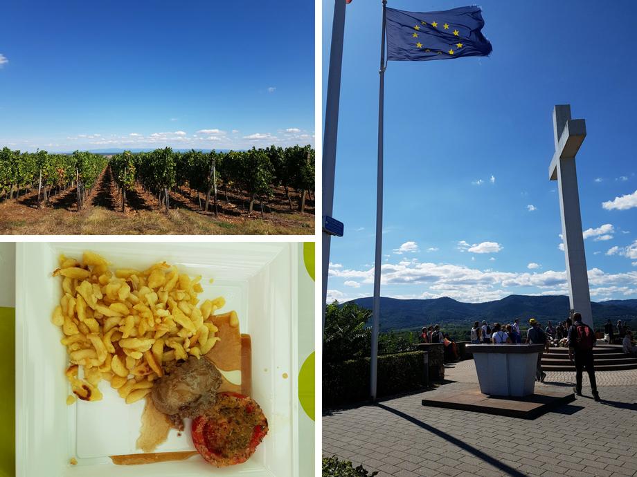 promenade gastronomique du Schenkenberg à Obernai