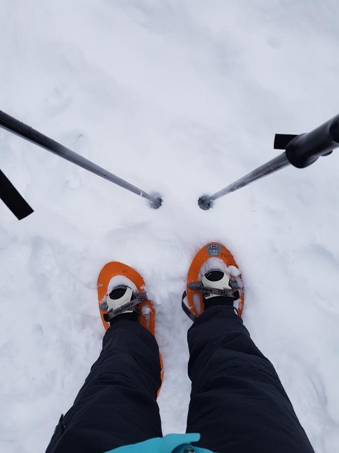 raquettes-neige-champ-feu-miss-elka