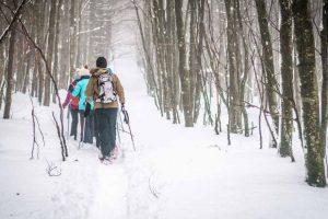 randonnée-raquettes-neige-champ-feu-credit-photo-une-fille-en-alsace