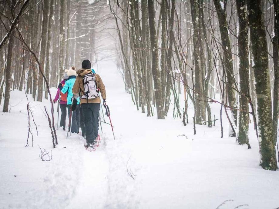 Randonnée en raquettes à neige au champ du feu