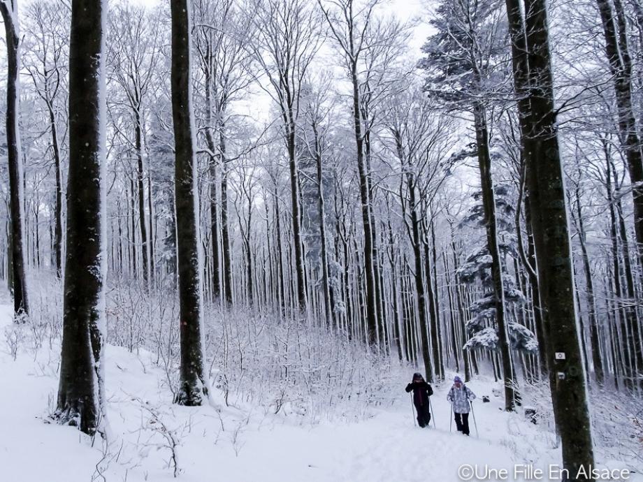 raquettes-neige-champ-feu-maorn-credit-photo-une-fille-en-alsace